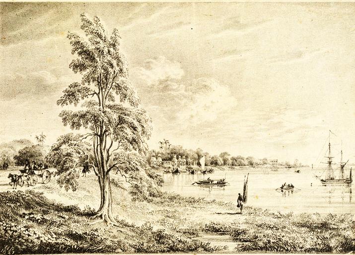 barrackpore-riverside-lipoo-tree_williamprinsep_1827