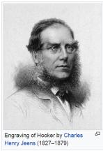 Sir Joseph Hooker (1817-1911)