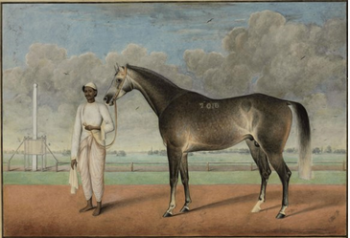 A Grey Racehorse and a Groom. Pencil and watercolour by Sheikh Muhammad Amir. Courtesy: Christies